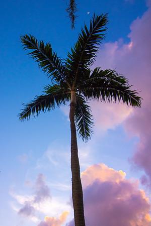 Xterra World Championships 2016- Maui HI