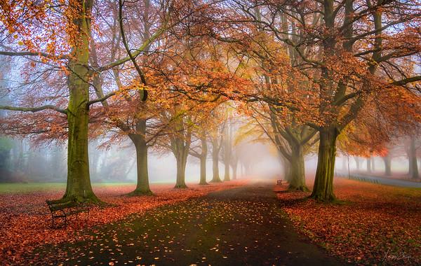 Autumn Path, The Promenade, Bristol, UK