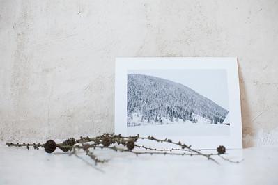 Colección Winter Whiteness