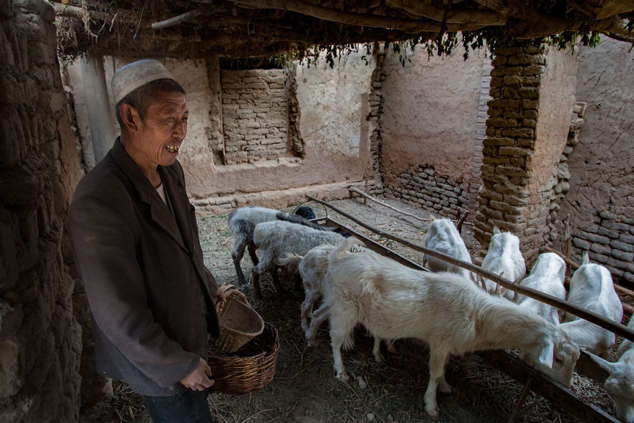 Village near Turpan