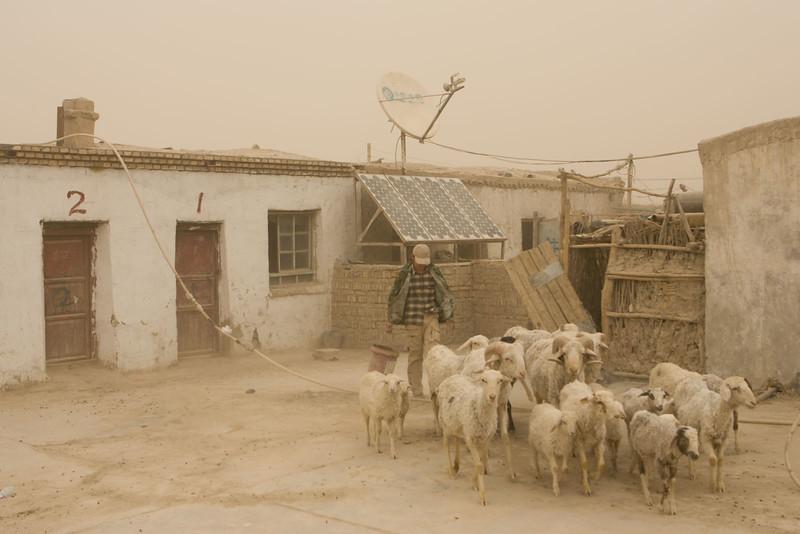 Sandstorm. Taklamaken desert, Qiemo.