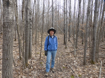 Hiking the North Country Trail in Minnesota