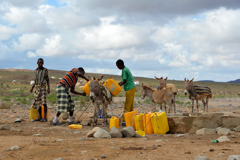 Water collection in rural Somalia