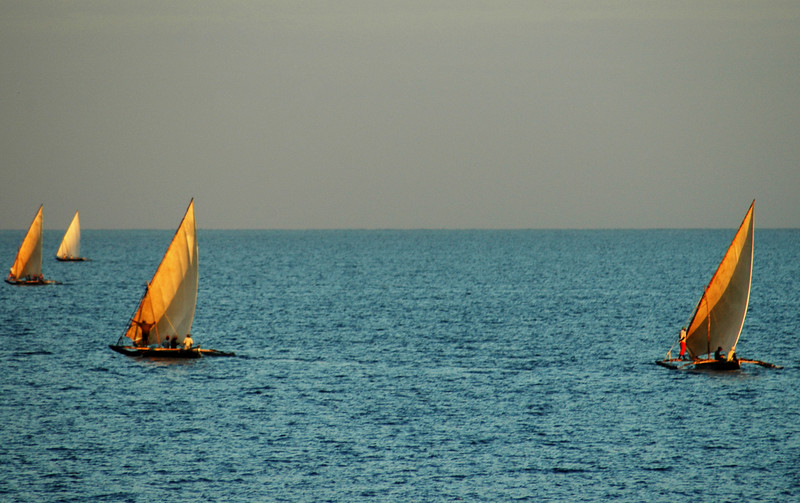 Location:  Zanzibar, Tanzania The early morning fishing dhows in Nungwi at the northern tip of Zanzibar.