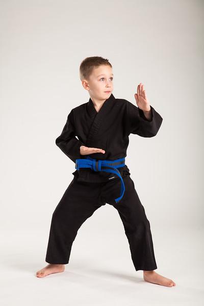 Karate 2014-071