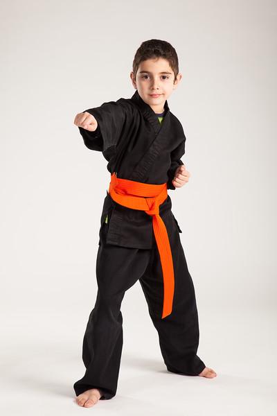 Karate 2014-067