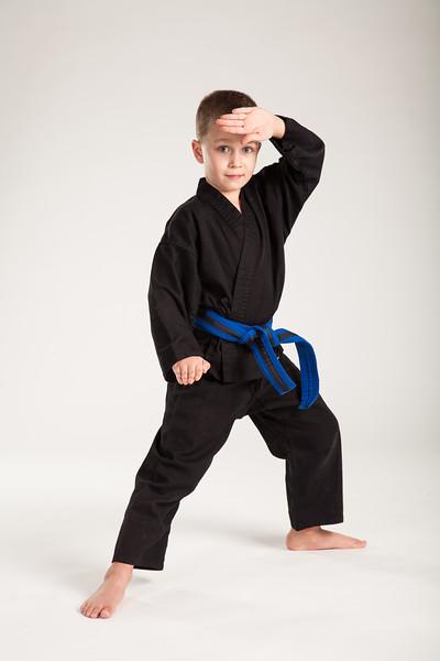 Karate 2014-073