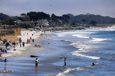 Coastal 29