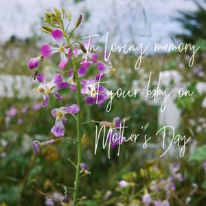 MD loving memory-11