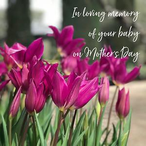 MD loving memory-15