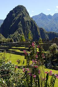 Travel Peru 7