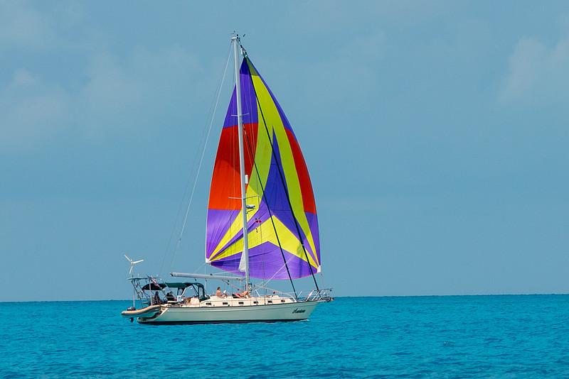 Gill_2019_April_Distant shores-Bahamas-808