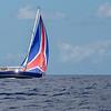 Gill_2019_April_DSIII-Bahamas-230