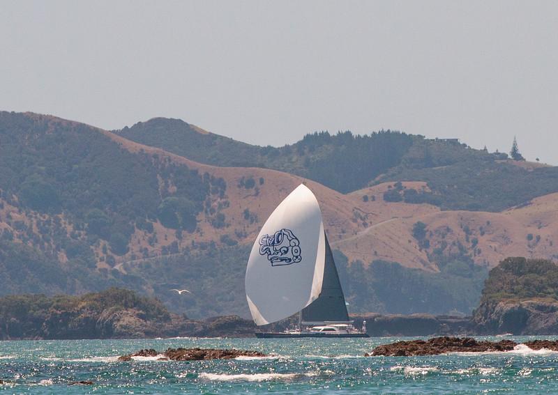 Gill_2020_NZ-53-2