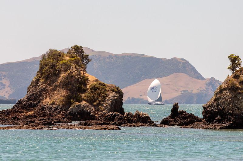 Gill_2020_NZ-53