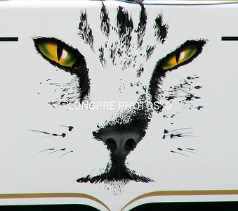 PYEWACKET  logo on side of boat.