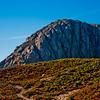 Northern California Island