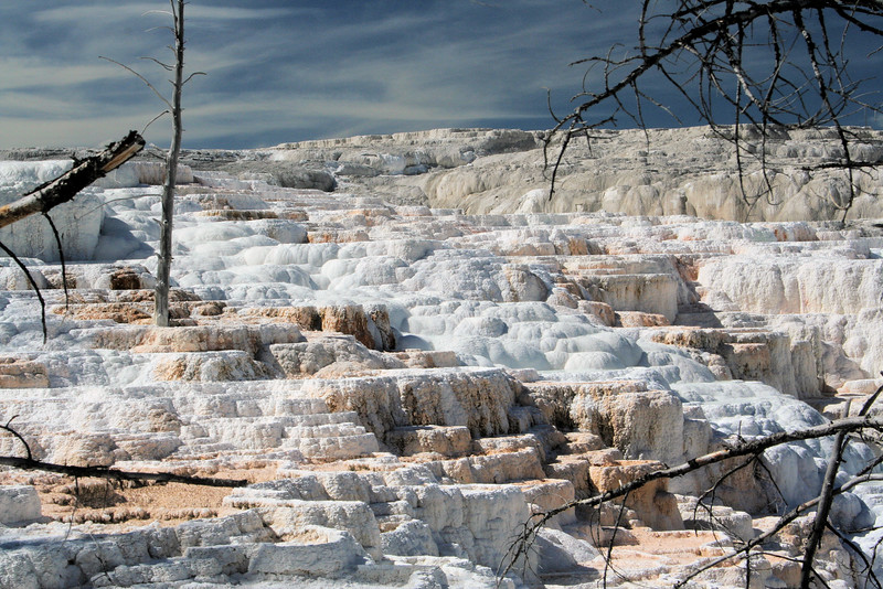 Terraces, Mammoth Hot Springs