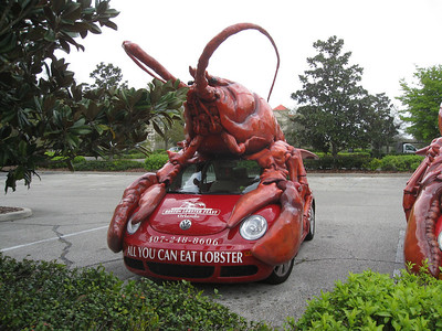 The Lobster Bug