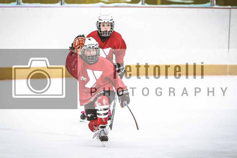 Elmhurst YMCA Hockey - Red