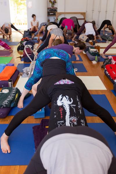 Yoga_For_All_Progressive_Asana-42