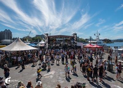 Yogoman | Victoria Ska and Reggae Festival 2016 | Victoria BC
