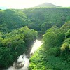Waiulu River00001820