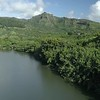Wailua River00007230