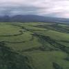 hills of waimea00006700