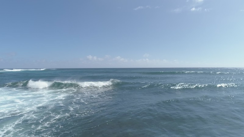 surfer Sheriton Poipu