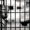 locked up baboon in a georgian safari zoo
