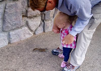 Friendly ground squirrels at Rock Creek Vista