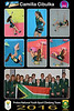 8x12 Collage CAMILLA - Protea Team01