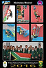 8x12 Collage NICK - Protea Team01
