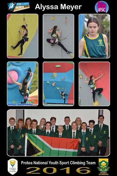 8x12 Collage ALYSSA - Protea Team01