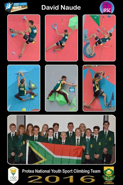 8x12 Collage DAVID - Protea Team01