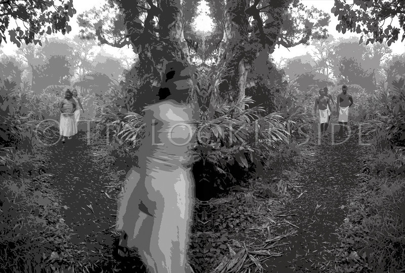 """""""Full Moon At Forest's Edge""""<br /> 2004 2nd Annual Black and White Photography Exhibition.<br /> Kahilu Theatre Foundation's juried artshow.<br /> ©Yvonne Yarber Carter"""