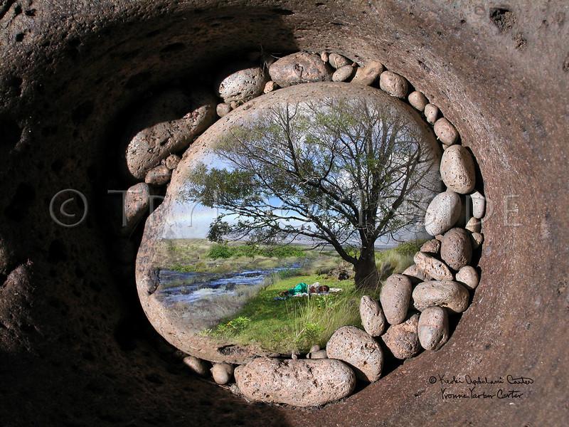 Pohaku Keeping Watch<br /> The beautiful stream near our hale, Keanuiomanō of ili  'Ō'uli. <br /> A collaborative piece.