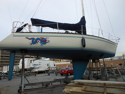 Schock 35 for sale