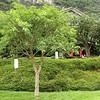 Yangshuo Mountain Retreat garden.