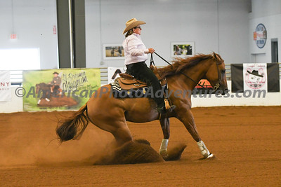 Novice Horse_20180729_0640