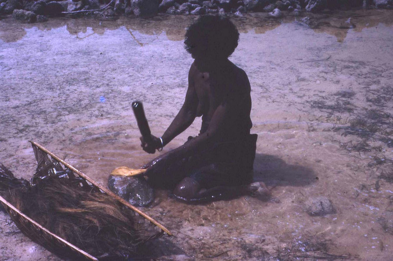 "Susan:  ""Pounding coconut husks on a rock in the ocean.  The pounded husks are then dried and used in roofing.  She is making the rope/string needed for the lashing."""