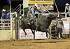 Open Bull Ride