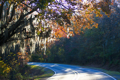Here are some great southern landscape shots!
