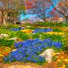 falls park flowers