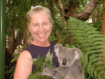 Lone Pine Koala Park, Brisbane, Australia