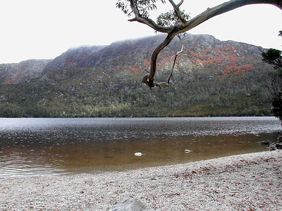 The track is superb this side of Dove Lake, with several access points to the rocky beach