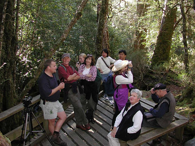 An eclectic collection of bush walkers, from all over the planet