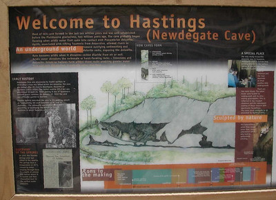 We entered Hastings Cave near where you see the little hut on the left side of the cross section, and followed the guide through vast, richly-adorned chambers whose formation began more than 40 million years ago.