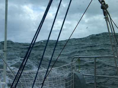Waves and albatross astern